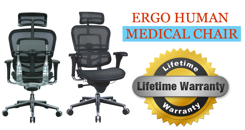 ergohuman mesh executive chairs with headrest by the raynor group the comfortable mesh back seat and headrest along with the multi adjustable mechanism - Ergohuman